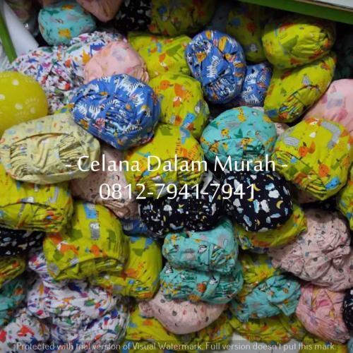 CD Anak Libby Warna (4)
