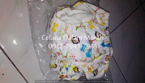 CD Anak Liby Putih (15)