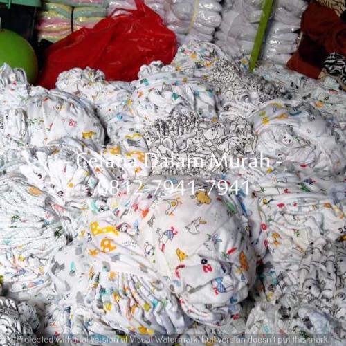 CD Anak Liby Putih (4)