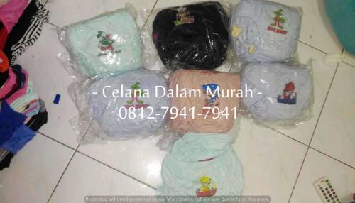 CD Anak Sablon (11)