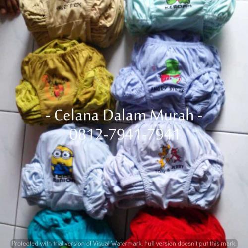 CD Anak Sablon (4)