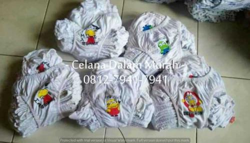 CD Anak Sablon (8)