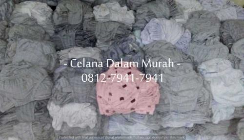 CD Wanita Dewasa (6)